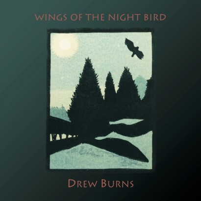 wings-of-the-night-bird